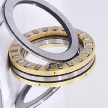 SKF/NSK/NTN/Koyo/NACHI/Timken/Cylindrical Roller Bearing (NU 2210 ECM)
