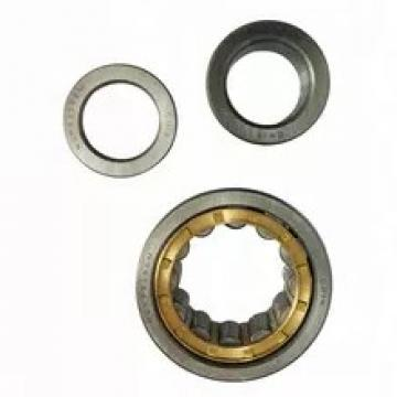 Chik/NSK/SKF/NTN/Koyo/ /Timken Brand N2205~N2230 Model Cylindrical Roller Bearings for Sale